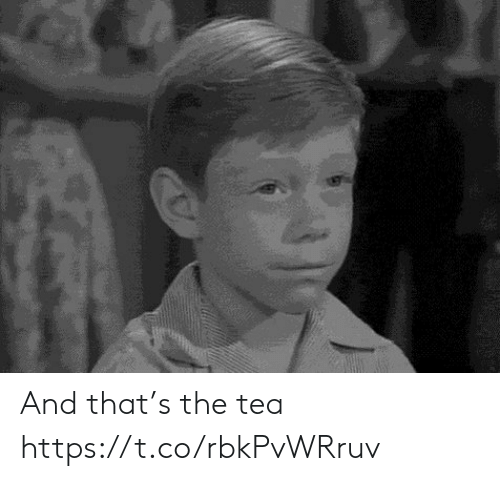 Memes, 🤖, and Tea: And that's the tea https://t.co/rbkPvWRruv