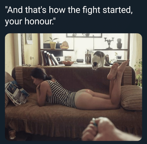 """Fight, How, and And: """"And that's how the fight started,  your honour."""""""