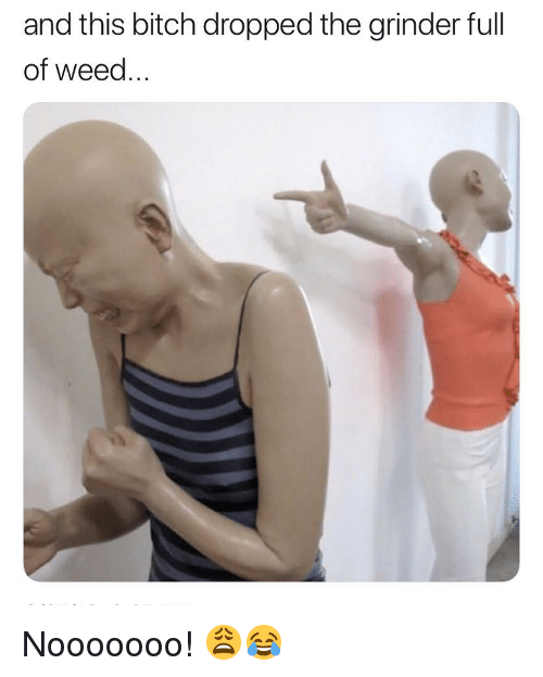 Bitch, Weed, and Marijuana: and this bitch dropped the grinder full  of weed.. Nooooooo! 😩😂