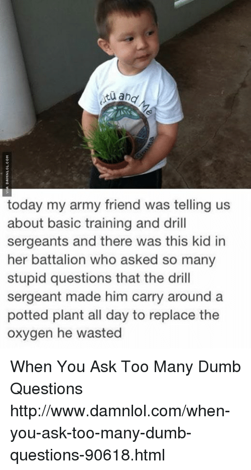 Basic Training: and  today my army friend was telling us  about basic training and drill  sergeants and there was this kid in  her battalion who asked so many  stupid questions that the drill  sergeant made him carry around a  potted plant all day to replace the  oxygen he wasted When You Ask Too Many Dumb Questions http://www.damnlol.com/when-you-ask-too-many-dumb-questions-90618.html