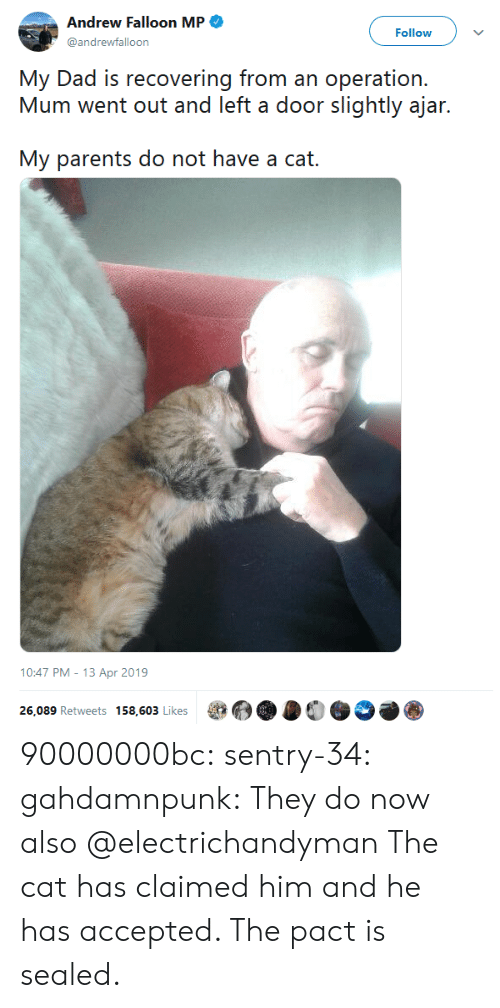 andrew: Andrew Falloon MP  Follow  @andrewfalloon  My Dad is recovering from an operation.  Mum went out and left a door slightly ajar.  My parents do not have a cat.   10:47 PM - 13 Apr 2019  26,089 Retweets 158,603 Likes 90000000bc: sentry-34:   gahdamnpunk:  They do now also  @electrichandyman   The cat has claimed him and he has accepted. The pact is sealed.