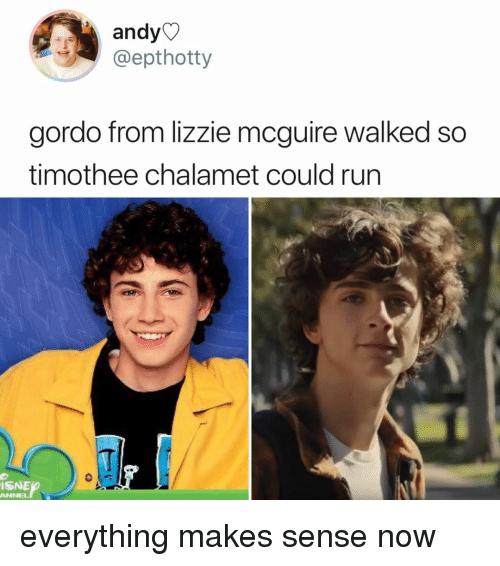 Run, Relatable, and Lizzie McGuire: andy  @epthotty  gordo from lizzie mcguire walked so  timothee chalamet could run  ISNE  ANNEL everything makes sense now