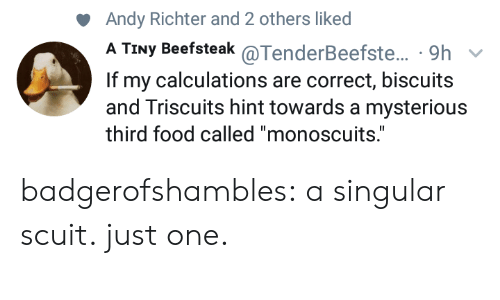 "Food, Tumblr, and Blog: Andy Richter and 2 others liked  A TINy Beefsteak @TenderBeefste.. , 9h  If my calculations are correct, biscuits  and Triscuits hint towards a mysterious  third food called ""monoscuits."" badgerofshambles: a singular scuit. just one."