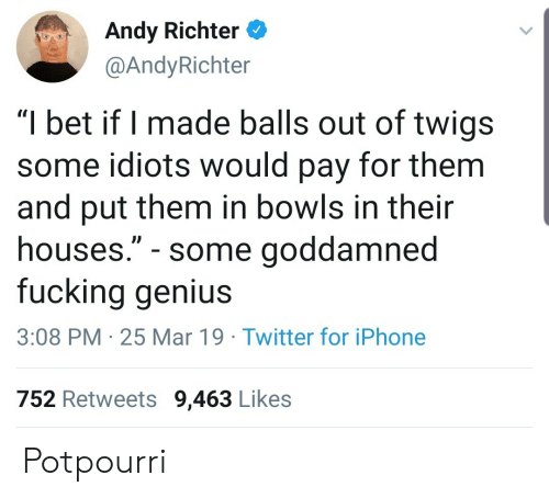 """Fucking, I Bet, and Iphone: Andy Richter  @AndyRichter  """"I bet if I made balls out of twigs  some idiots would pay for them  and put them in bowls in their  houses."""" - some goddamned  fucking genius  3:08 PM 25 Mar 19 Twitter for iPhone  752 Retweets 9,463 Likes Potpourri"""