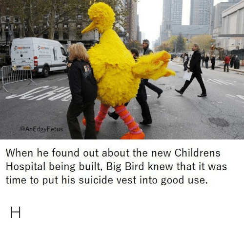 Children's Hospital, Good, and Hospital: @AnEdgyFetus  When he found out about the new Childrens  Hospital being built, Big Bird knew that it was  time to put his suicide vest into good use. H