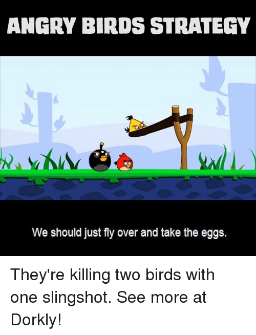 slingshot: ANGRY BIRDS STRATEGY  We should just fly over and take the eggs. They're killing two birds with one slingshot.  See more at Dorkly!
