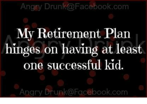 success kid: Angry Drunk a Facebook.com  My Retirement Plan  hinges on having at least  one successful kid.  Angry Drunko Facebook.com
