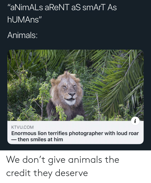 "roar: ""aNimALs aReNT aS smArT As  hUMAns""  Animals:  KTVU.COM  Enormous lion terrifies photographer with loud roar  then smiles at him We don't give animals the credit they deserve"
