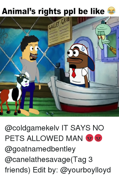 Animals, Be Like, and Friends: Animal's rights ppl be like *  GR  GA @coldgamekelv IT SAYS NO PETS ALLOWED MAN 😡😡 @goatnamedbentley @canelathesavage(Tag 3 friends) Edit by: @yourboylloyd