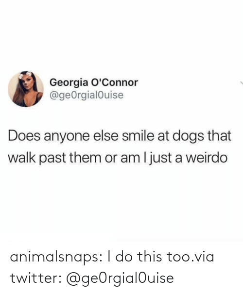 i do: animalsnaps:  I do this too.via twitter: @ge0rgial0uise