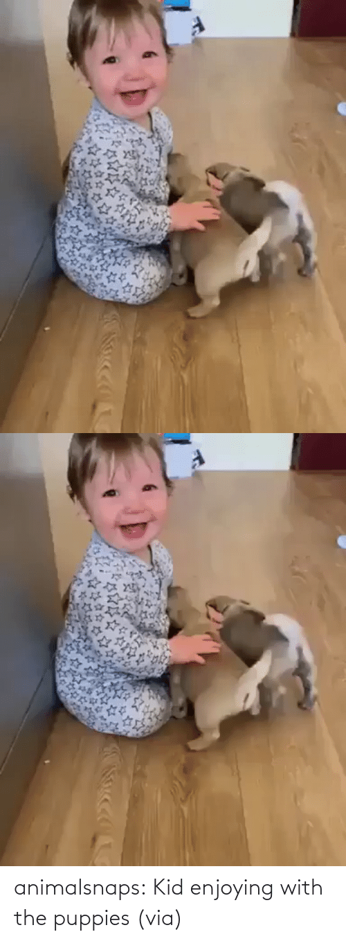 enjoying: animalsnaps:  Kid enjoying with the puppies (via)