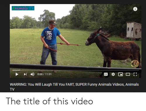 Laugh Till: Animaly TV  0:00/11:01  CC  WARRING: You Will Laugh Till You FART, SUPER Funny Animals Videos, Animals  TV  AERD The title of this video