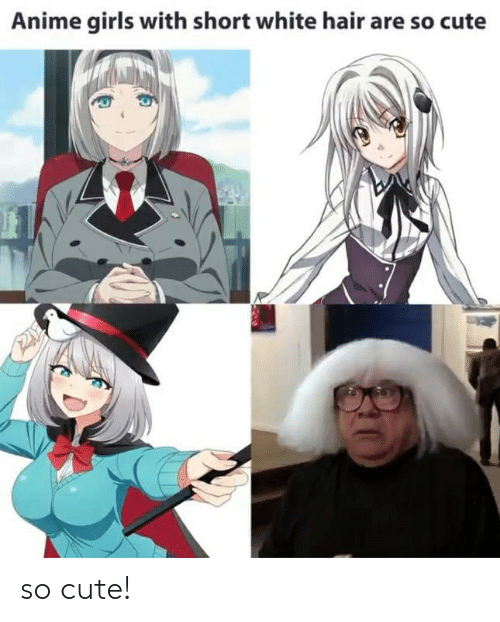 Anime, Cute, and Girls: Anime girls with short white hair are so cute so cute!