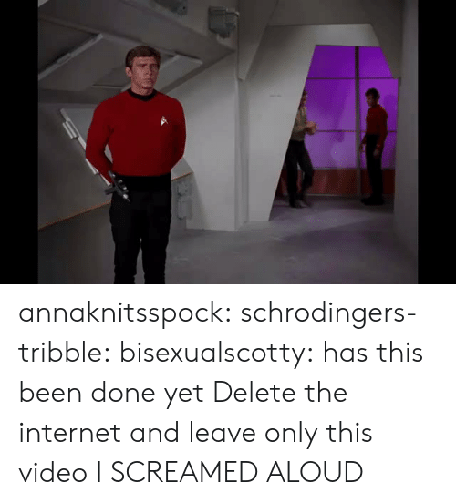 Internet, Target, and Tumblr: annaknitsspock: schrodingers-tribble:  bisexualscotty:  has this been done yet  Delete the internet and leave only this video  I SCREAMED ALOUD
