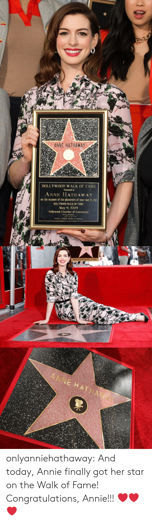 Tumblr, Anne Hathaway, and Annie: ANNE HATHAWAY  HOLLY WOOD WALK OF FAME  Presented to  ANNE HATHAWAY  on the ocrasion of the placement of your star in the  HOLLYWOOD WALK OF FAME  May 2019  Hollywood Chamber of Commerce  ana Ghadban   WALKOFFAME.COM onlyanniehathaway:  And today, Annie finally got her star on the Walk of Fame! Congratulations, Annie!!!  ❤️❤️❤️