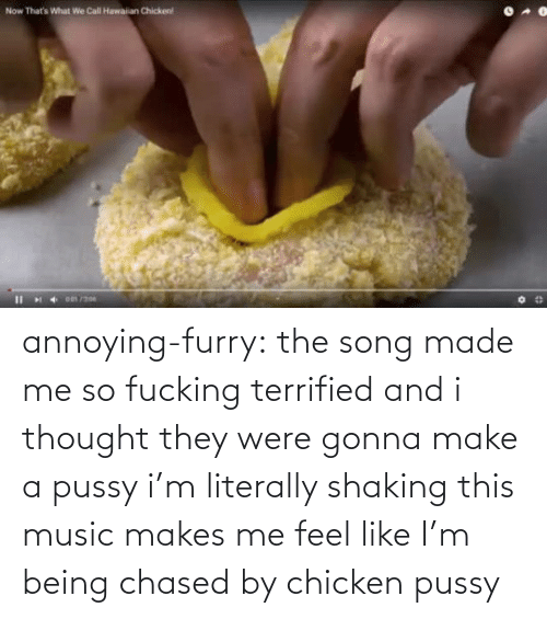 terrified: annoying-furry: the song made me so fucking terrified and i thought they were gonna make a pussy i'm literally shaking this music makes me feel like I'm being chased by chicken pussy