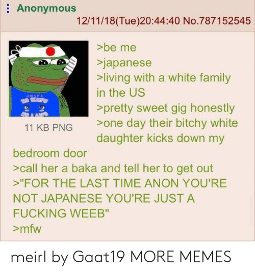 "Dank, Family, and Fucking: Anonymous  12/11/18(Tue)20:44:40 No.787152545  >be me  Sjapanese  living with a white family  in the US  >pretty sweet gig honestly  11 KB PNG one day their bitchy white  daughter kicks down my  bedroom door  >call her a baka and tell her to get out  ""FOR THE LAST TIME ANON YOU'RE  NOT JAPANESE YOU'RE JUST A  FUCKING WEEB""  >mfw meirl by Gaat19 MORE MEMES"