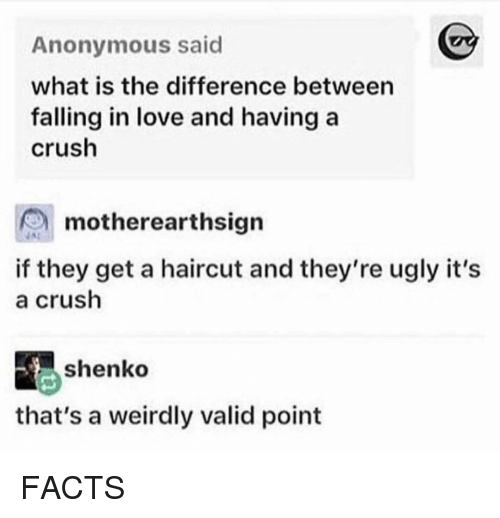 Crush, Facts, and Haircut: Anonymous said  what is the difference between  falling in love and having a  crush  motherearthsign  if they get a haircut and they're ugly it's  a crush  shenko  that's a weirdly valid point FACTS