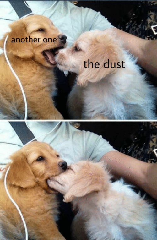 Another one: another one  the dust