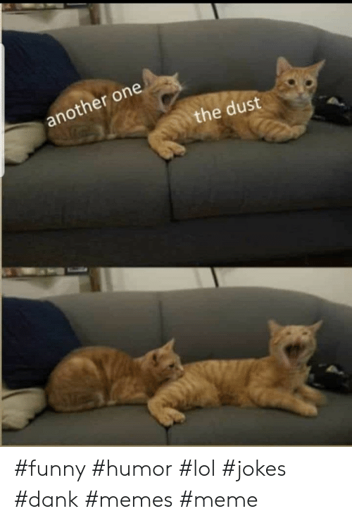 Another One, Dank, and Funny: another one  the dust #funny #humor #lol #jokes #dank #memes #meme