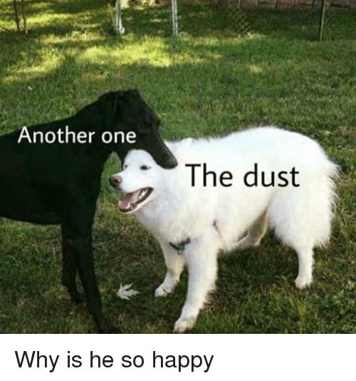 Another One, Happy, and Another: Another one  The dust Why is he so happy
