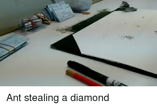 Stealing A: Ant stealing a diamond