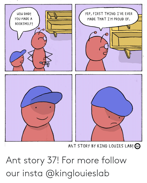 ant: Ant story 37! For more follow our insta @kinglouieslab