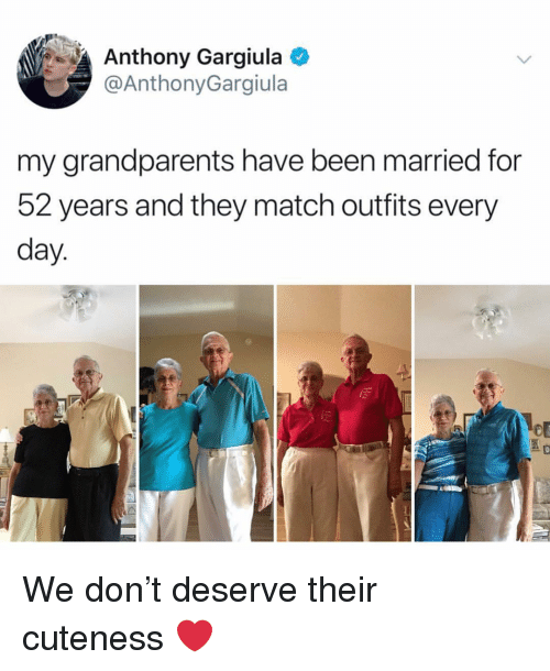 Memes, Match, and Been: Anthony Gargiula  @AnthonyGargiula  my grandparents have been married for  52 years and they match outfits every  day We don't deserve their cuteness ❤️