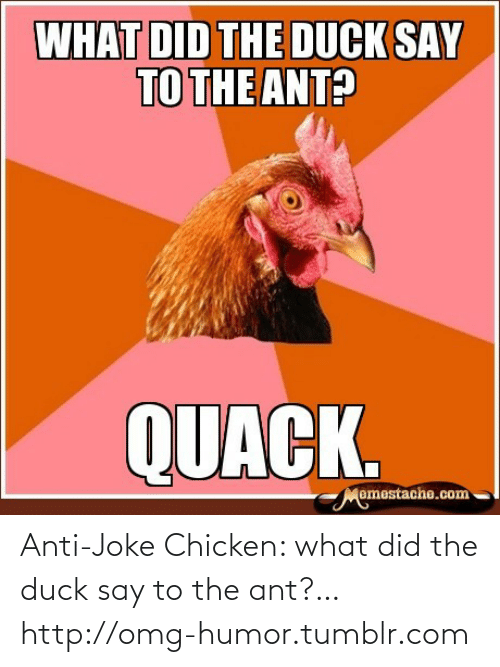joke chicken: Anti-Joke Chicken: what did the duck say to the ant?…http://omg-humor.tumblr.com