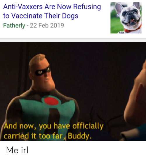 Anti Vaxxers: Anti-Vaxxers Are Now Refusing  to Vaccinate Their Dogs  Fatherly - 22 Feb 2019  nd now, you have officially  carrièd it too far Buddy. Me irl