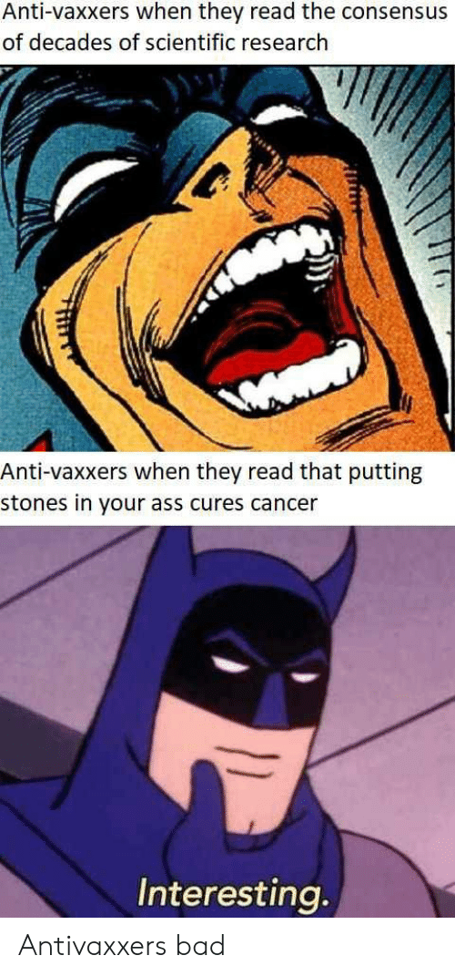 Anti Vaxxers: Anti-vaxxers when they read the consensus  of decades of scientific research  Anti-vaxxers when they read that putting  stones in your ass cures cancer  Interesting Antivaxxers bad