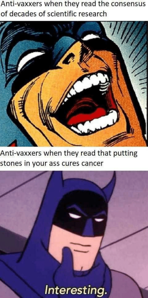 Anti Vaxxers: Anti-vaxxers when they read the consensus  of decades of scientific research  Anti-vaxxers when they read that putting  stones in your ass cures cancer  Interesting