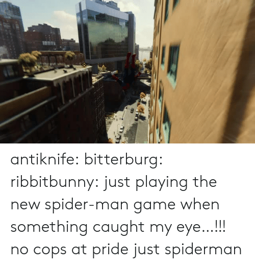 Caught My Eye: antiknife: bitterburg:  ribbitbunny:  just playing the new spider-man game when something caught my eye…!!!   no cops at pride just spiderman