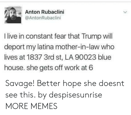 Dank, Memes, and Savage: Anton Rubaclini  @AntonRubaclini  I live in constant fear that Trump ill  deport my latina mother-in-law who  lives at 1837 3rd st, LA 90023 blue  house. she gets off work at 6 Savage! Better hope she doesnt see this. by despisesunrise MORE MEMES