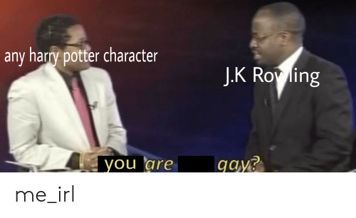 Any Harry Potter Character JK Rov Ling You Are Gays Me_irl