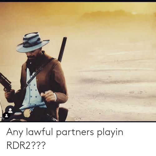Rdr2: Any lawful partners playin RDR2???