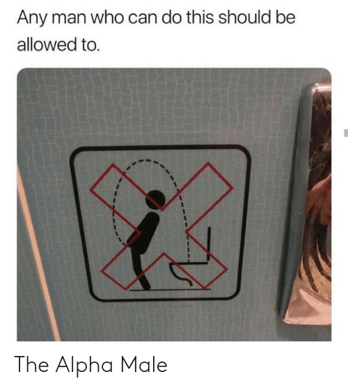 alpha: Any man who can do this should be  allowed to. The Alpha Male