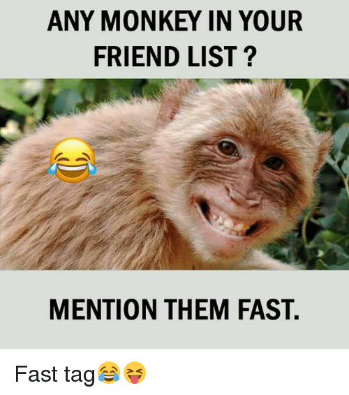 fastly: ANY MONKEY IN YOUR  FRIEND LIST?  MENTION THEM FAST. Fast tag😂😝