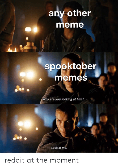 Meme, Memes, and Reddit: any other  meme  spooktober  memes  Why are you looking at him?  Look at me. reddit at the moment
