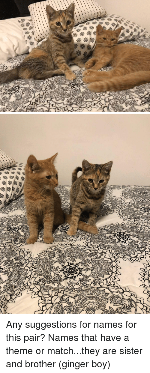 Match, Boy, and Brother: Any suggestions for names for this pair? Names that have a theme or match...they are sister and brother (ginger boy)