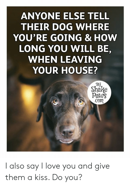 Love, Memes, and I Love You: ANYONE ELSE TELL  THEIR DOG WHERE  YOU'RE GOING & HOW  LONG YOU WILL BE,  WHEN LEAVING  YOUR HOUSE?  By  Shake  Paws  .Com I also say I love you and give them a kiss. Do you?