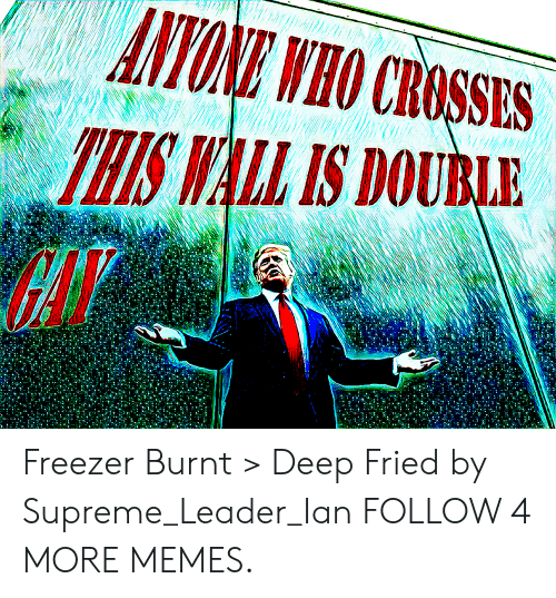 Whis: ANYONE WHO CROSSES  WHIS WALL IS DOUBLE Freezer Burnt > Deep Fried by Supreme_Leader_Ian FOLLOW 4 MORE MEMES.