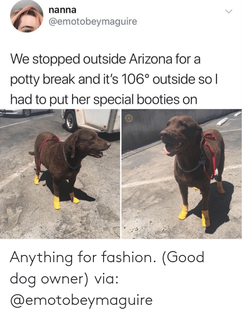 Fashion: Anything for fashion. (Good dog owner) via: @emotobeymaguire