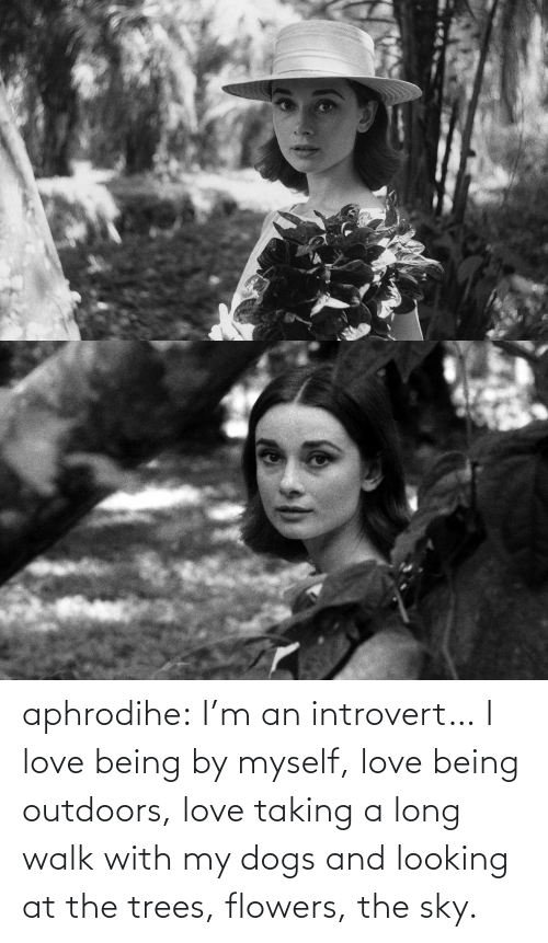 introvert: aphrodihe: I'm an introvert… I love being by myself, love being outdoors, love taking a long walk with my dogs and looking at the trees, flowers, the sky.