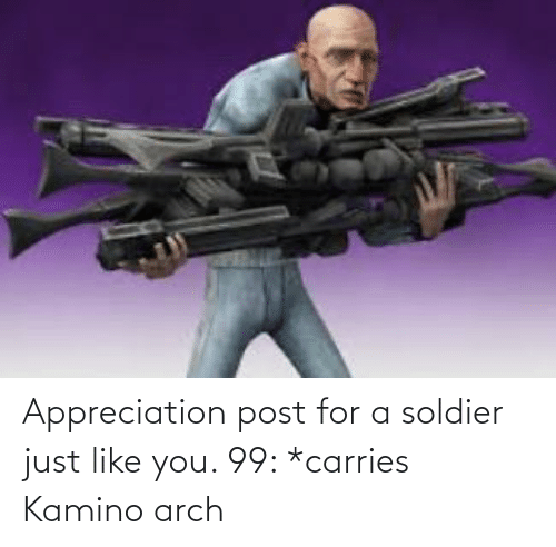 kamino: Appreciation post for a soldier just like you. 99: *carries Kamino arch