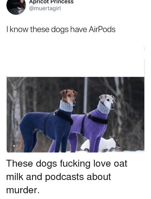 Podcasts: Apricot Princess  @muertagirl  I know these dogs have AirPods These dogs fucking love oat milk and podcasts about murder.