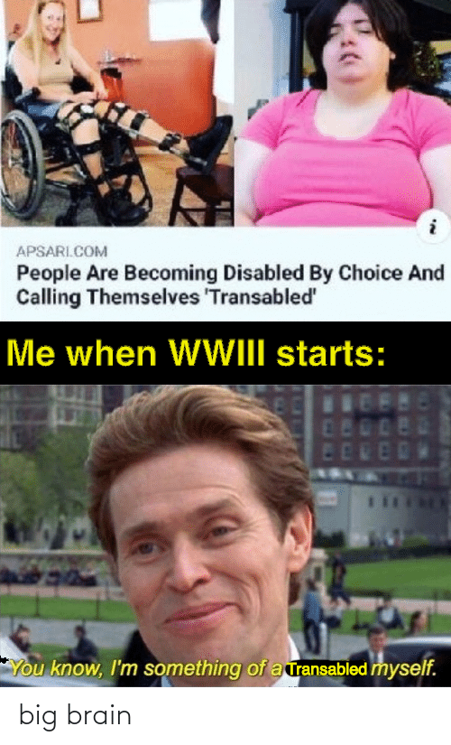 Me When: APSARI.COM  People Are Becoming Disabled By Choice And  Calling Themselves 'Transabled'  Me when WWIII starts:  480  ED  You know, I'm something of a ransabled myself. big brain