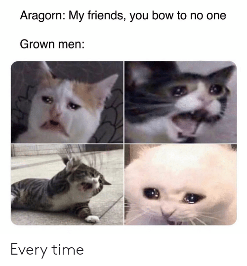 my friends you bow to no one: Aragorn: My friends, you bow to no one  Grown men: Every time