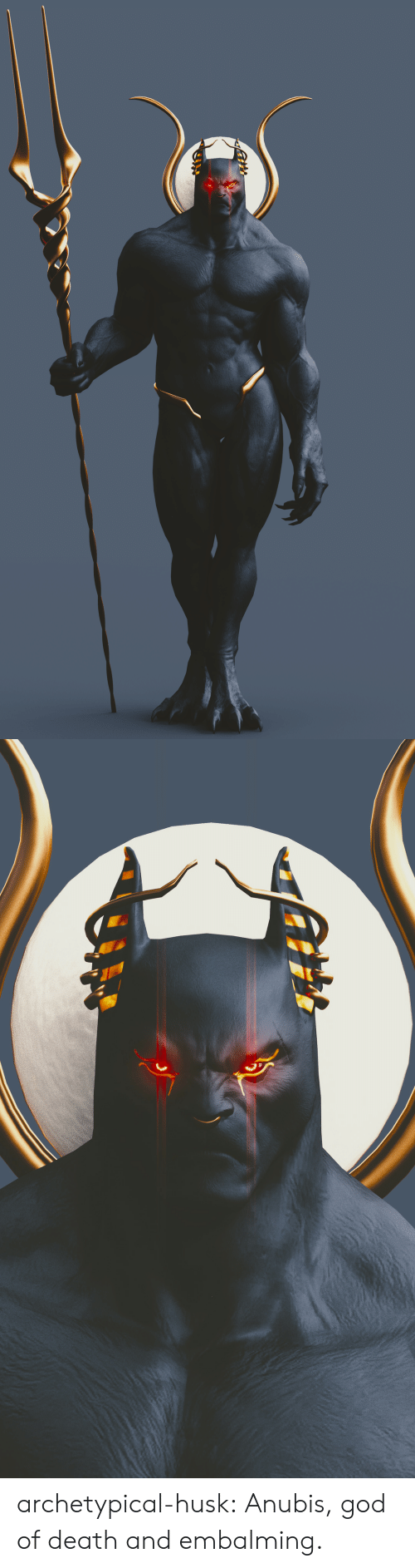 God, Tumblr, and Blog: archetypical-husk:  Anubis, god of death and embalming.