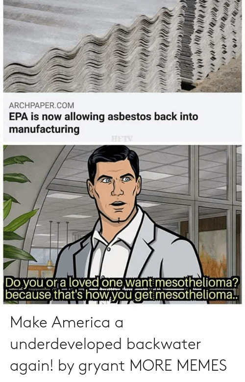 America, Dank, and Memes: ARCHPAPER.COM  EPA is now allowing asbestos back into  manufacturing  Do vou or a loved one want mesothelioma?  because that's how,you get mesothelioma! Make America a underdeveloped backwater again! by gryant MORE MEMES